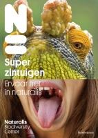 34_superzintuigen2.jpg